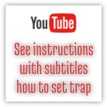 See instructions how to set trap on YouTube